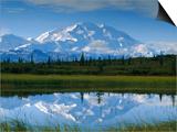 Tundra Ponds  Mt Mckinley  AK