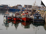 Fishing Boats  Howth Harbour  County Dublin  Republic Ireland  Europe