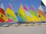 Sail Boats on the Beach  St James Club  Antigua  Caribbean  West Indies  Central America