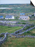 Inishmore  Aran Islands  County Galway  Connacht  Eire (Republic of Ireland)