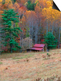 Cabin in Late Autumn in West Virginia