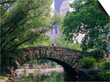 The Pond  Central Park  New York  USA