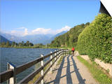 Man Bikes Along Path at Lake's Edge  Lake Como  Italian Lakes  Lombardy  Italy  Europe