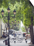 Horse Carriage For Tourists  Zona Colonial  UNESCO World Heritage Site  Dominican Republic