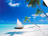 Dhoni Moored by Empty Beach  Maldives  Indian Ocean