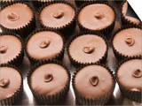 Chocolates at the Ganong Chocolate Factory  New Brunswick  Canada  North America