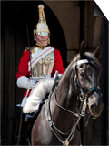 Life Guard One of the Household Cavalry Regiments on Sentry Duty  London  England  United Kingdom