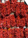 Chillies for Sales  Santa Fe  New Mexico  United States of America  North America