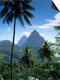 The Pitons  St Lucia  Windward Islands  West Indies  Caribbean  Central America