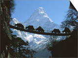 Bridge on Ama Dablam  Nepal