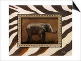 New Zebra Inspiration I