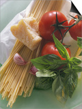 Still Life with Spaghetti  Tomatoes  Basil & Parmesan