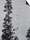 Two Skiers with Evergreen