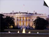 The White House  Washington  DC  USA