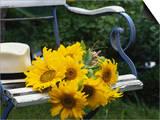 Sunflowers on a Garden Chair