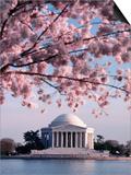Jefferson Memorial  Washington  DC  USA
