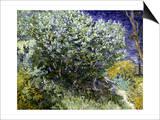 Van Gogh: Lilacs  19Th C