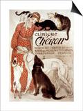 French Veterinary Clinic