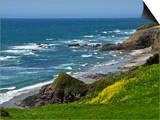 High Tide on the Central Oregon Coast  USA  Series