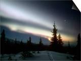 Aurora Borealis or Northern Lights  Alaska  USA