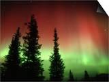 Aurora Borealis or Northern Lights  Alaska Range  Alaska  USA