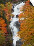 Silver Cascade  White Mountain National Forest in Autumn  Crawford Notch State Park  New Hampshire