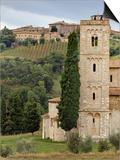 Vineyards  St Antimo Abbey  Montalcino  Tuscany  Italy