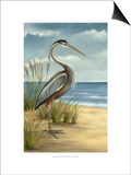 Shore Bird I