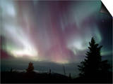 Aurora Borealis  Northern Lights  Alaska Range Mountains  Alaska  USA  North America