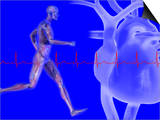 Runner  Male Likeness Showing Musculature and Skeleton Against an Ekg and Heart