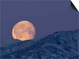 Moon over the Winter Alaska Range  Denali National Park  Alaska  USA