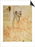 Anatomical Studies  circa 1500-07