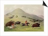 The Buffalo Hunt  C1832 (Coloured Engraving)