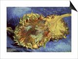 Sunflowers  1887