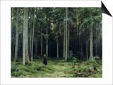 Countess Mordvinov's Forest  1891