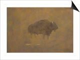 Buffalo in a Sandstorm (Oil on Paper Mounted on Board)