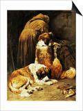 The Faith of St Bernard