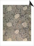 """Rose-90"" Wallpaper Design"