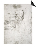 Head of an Old Man in Profile  Facsimile Copy