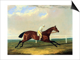 'tarrare' Ridden by George Nelson