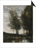The Pond  Cowherd