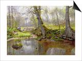 Woodland Pond  1890