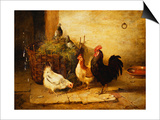 Poultry and Pigeons in an Interior  1881