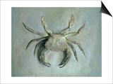 Velvet Crab  1870-1