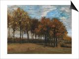 Autumn Landscape  C1885