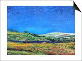 Derbyshire Landscape  1999