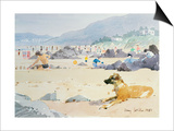 Dog on the Beach  Woolacombe  1987