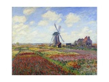 Tulip Fields in Holland by Claude Monet