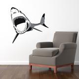 Two-Toned Shark Black