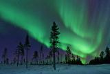 Aurora Borealis Northern Lights Sweden
